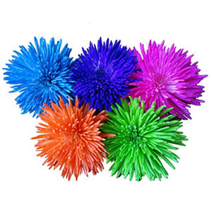 Assorted Neon Painted Spider Mums - 60 Stems