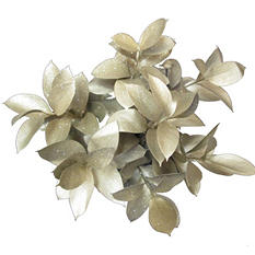 Ruscus Painted & Glittered Gold  (168 Stems)