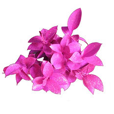 Ruscus Painted & Glittered Hot Pink (168 Stems)