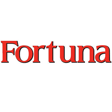 Fortuna Blue 100s Box - 200 ct.