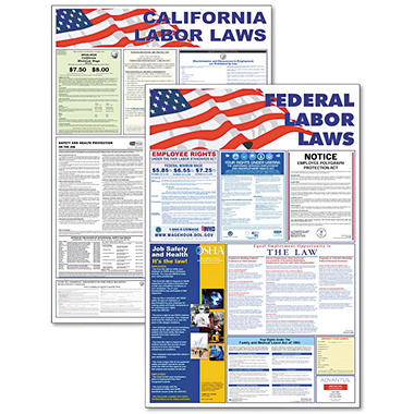 Advantus - State/Federal Labor Lawith Legally Required Multi-Colored Poster, 24 x 30