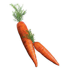 Big Rubber Carrots (3 ct.)