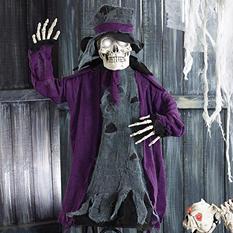 Groom Skeleton
