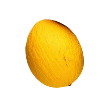 Yellow Honeydew