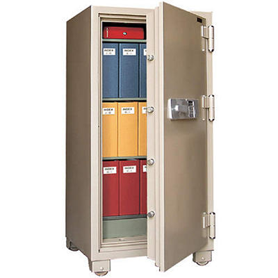 Mesa Safe 2 Hour Fire Safe, 12.2 Cubic Feet (Choose Delivery Method)