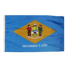 Annin - Delaware State Flag 3x5' Nylon SolarGuard