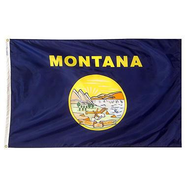 Annin - Montana state flag 4x6 ft. Nylon SolarGuard