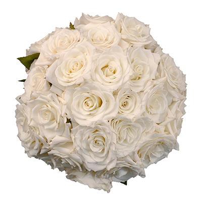 Roses - Vendela - 75 Stems