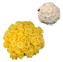 Roses - Wedding Pack Yellow & White - 75 Stems