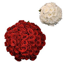 Roses - Wedding Pack Red & White - 75 Stems