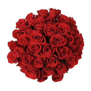 Roses - Red (75 stems)