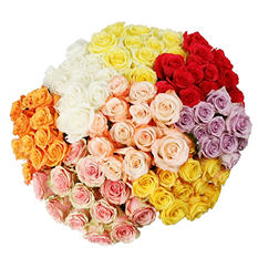 Roses - Assorted Color - 75 Stems
