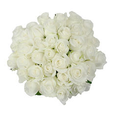 Roses - White - 75 Stems