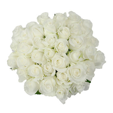Roses - White (75 stems)