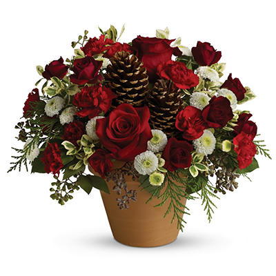 Teleflora's Winter's Gift Bouquet