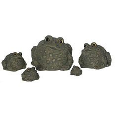 Toad Hollow Stackable Family Pack - 5 pc.