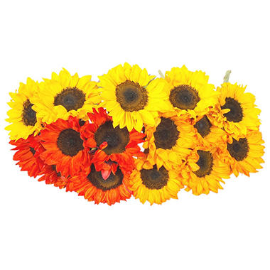 Sunflowers - Tinted - 40 Stems