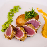 Wild Caught Ahi Tuna Loin (15 lb.)