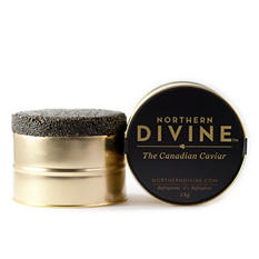 Northern Divine Certified Organic Sturgeon Caviar (1 kg tin)