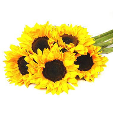 Sunflowers - Yellow - 40 Stems