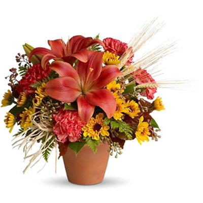Warm Welcome Bouquet