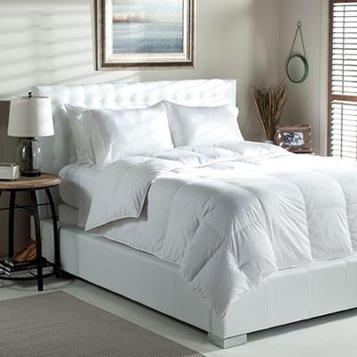 Eddie Bauer 650 Fill Power Down Comforter - 300 TC - Queen