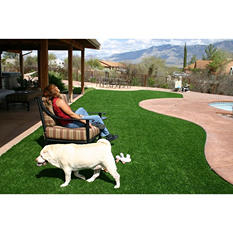 ProViri Natural Artificial Grass 15' x Custom Order - Choose Your Size