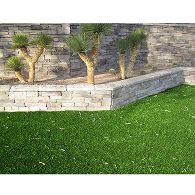 ProViri Plus Artificial Grass Lawn - Choose Your Size