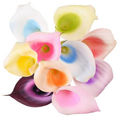 Color Splash Mini Calla, Assorted Rainbow (100 stems)