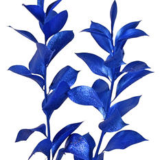 Painted Ruscus, Metallic Blue with Glitter (Choose 60 or 120 stems)
