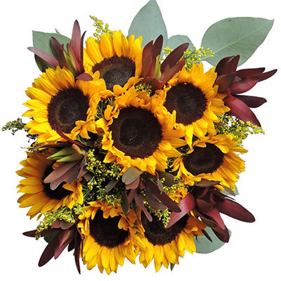 Sun Rising Mixed Bouquet - 7 pk.