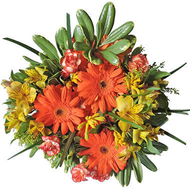 Pumpkin Patch Mixed Bouquet - 7 pk.