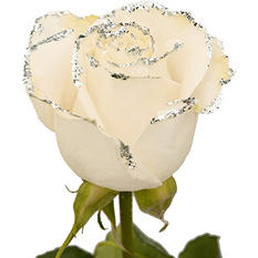 Roses - White with Silver Glitter