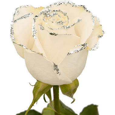 Roses - White with Silver Glitter (50 or 100 stems)