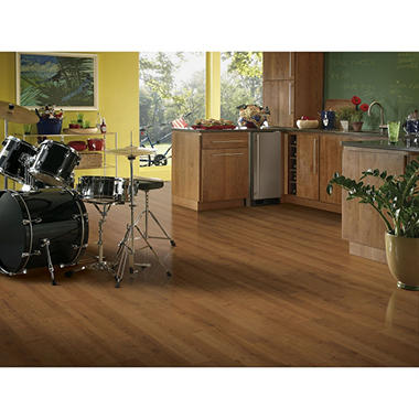 Premier? from Armstrong - 12mm Laminate Flooring Sample-Various Colors
