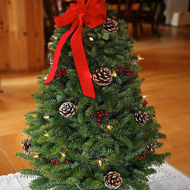Christmas Twinkle 28 Inch Tabletop Tree