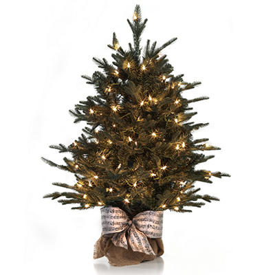 Holiday Classic Evergreen Tree, Winter Lux (3')
