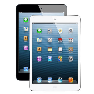 $30 off select iPad Mini for Last Minute Valentine's Gifting!