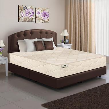 American Sleep Organic Mattress - Twin