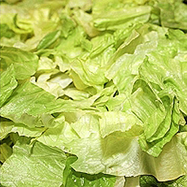 Fresh Shredded Lettuce