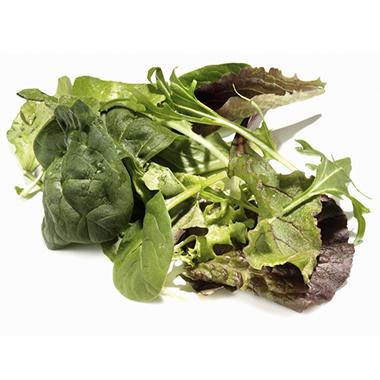 Fresh Organic Spring Mix
