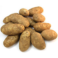 Green Giant Russet Baking Potatoes (50 lb.)