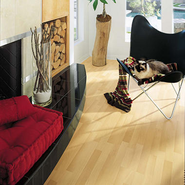 Traditional Living� Premium Laminate Flooring - Classic Beech; 8MM + 2MM Underlayment Thick - 1PK