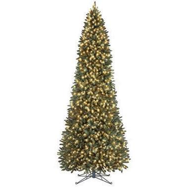 Juneau Fir Slim Christmas Tree - 12 ft.