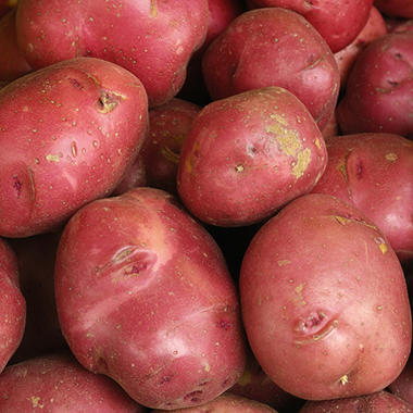 Red Skin Golden Potatoes - 10 lbs.