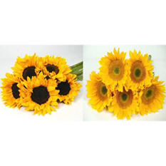 Sunflowers - Yellow - 80 Stems