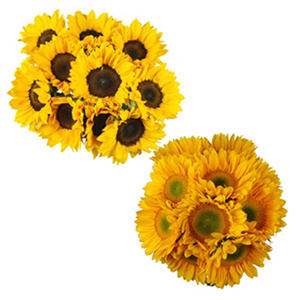 Mini Sunflowers - Yellow - 100 Stems