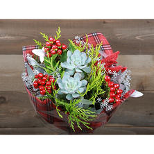 Frosted Cranberry Succulent Holiday Bouquet (14 stems)