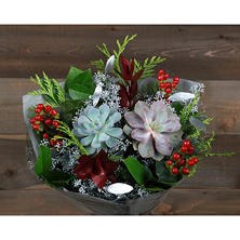 Winter Bounty Succulent Bouquet (13 stems)