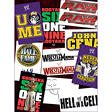 "WWE Stickers - 3"" x 4"" - 10 ct."